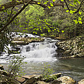 Debra and Dave Vanderlaan - Cascades at Coker Creek