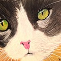 Renee Michelle Wenker - Cat Face