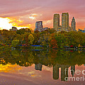 Kim Quintano - Central Park sunset in...