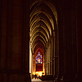 David Hohmann - Chartres Cathedral