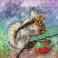 Angela A Stanton - Chippy the Squirrel of...