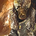Susan A Becker - Chocolate Poodle