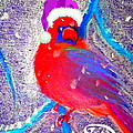 Sue Jacobi - Christmas Card Cardinal...