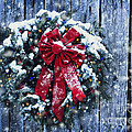 Stephanie Frey - Christmas Wreath in Snow...