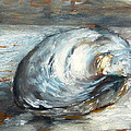 Timi Johnson - Clam shell study