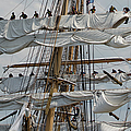 Marianne Campolongo - Coast Guard Cutter Eagle...