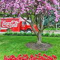 Carol  Lux Photography - Coca-Cola and Pink...