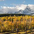 Aaron Spong - Colorado Gold Panorama