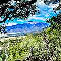 Debra Martz - Colorado Hiking View