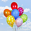 Elena Elisseeva - Colorful balloons with...