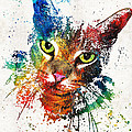 Sharon Cummings - Colorful Cat Art by...
