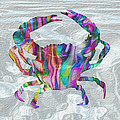 Jack Zulli - Colorful Crab