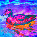 Priya Ghose - Colorful Duck Art by...