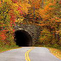 Stacy Redmon - Colorful Parkway Tunnel