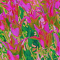Photographic Art and Design by Dora Sofia Caputo - Colorful Tulips Pop Art