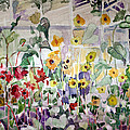Mindy Newman - Conservatory Sunflowers