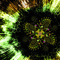 Shawn Dall - Cosmic Solar Flower Fern...
