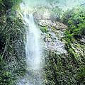 Peggy Collins - Costa Rica Waterfall