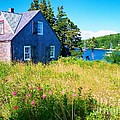 Patricia L Davidson  - Cottage By The Sea
