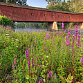 Bill  Wakeley - Covered Bridge West...