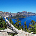 Debra Thompson - Crater Lake And Fallen...
