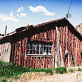 Janice Rae Pariza - Crawford Colorado Cabin