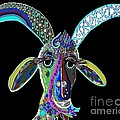 Eloise Schneider - CRAZY GOAT on Black...