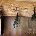 RC deWinter - Crossbeam with Herbs...