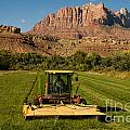 Robert Ford - Cutting the Last Hay of...