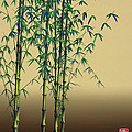 GuoJun Pan - Daily Flower Bamboo -...