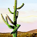 Bob Johnston - Dancing Cactus Sunrise...