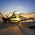 Debra and Dave Vanderlaan - Dawn on Driftwood Beach