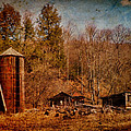 Pamela Phelps - Decaying Farm-Textured...