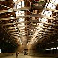Kathy Barney - Derbyshire Stables...