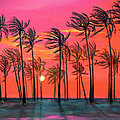 Asha Carolyn Young - Desert Palm Trees at...