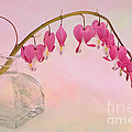 Ann Garrett - Dicentra in a Glass Vase