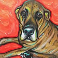 Lauren Hammack - Diggs The Great Dane