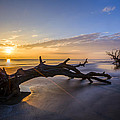 Debra and Dave Vanderlaan - Driftwood Beach at...