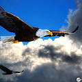Todd and candice Dailey - Eagles In Flight
