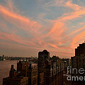 Miriam Danar - East River View with...