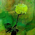 Shirley Sirois - Enduring Yellow Rose