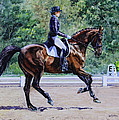 Kristine Plum - Extended Canter