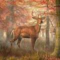 Daniel Eskridge - Fall Buck