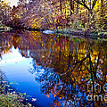 Tom Gari Gallery-Three-Photography - Fall Reflections