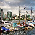 Theresa Tahara - False Creek