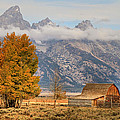 Donna Kennedy - Famous Barn-Grand Tetons