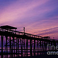 Dawna  Moore Photography - Fernandina Fishing Pier...