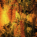 Nina Fosdick - Ferns in Fall