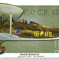 Kenneth De Tore - Fiat C.R. 42