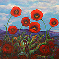Kathy Peltomaa Lewis - Field of Poppies